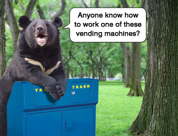 Metal garbage cans are the ultimate bear proof trash enclosures