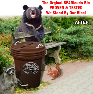 Bear Proof Garbage Cans Image Of Bear And Rose Imagetool Co