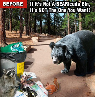 Before bearproof can