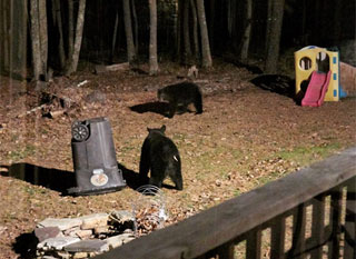 Stealth bearproof garbage can